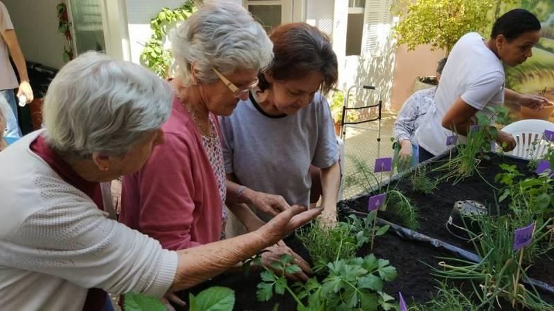 Orçamento de Cuidados de Idosos com Mobilidade Reduzida Jardim Platina - Cuidados Paliativos para Idosos
