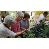 recreação para idosos CECAP