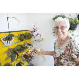 serviço de creche para idoso para fim de semana Jardim Chapadão